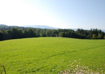 Aussicht-Schwarzwald-Stabhalterhnof