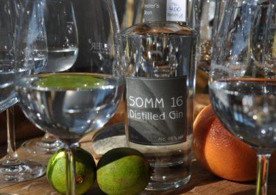 Sommelier Gin - Gin Somm 16